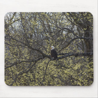 Mousepad Vigia de Eagle Painterly