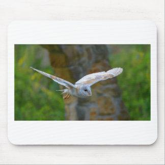 Mousepad Vôo da coruja de celeiro