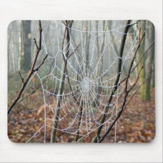Mousepad Web da esteira européia de Mpuse da aranha de