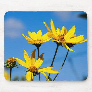 Mousepad Wildflowers amarelos contra o céu azul Mouspad