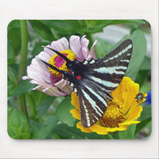 Mousepad Zebra Swallowtail+Besouro japonês