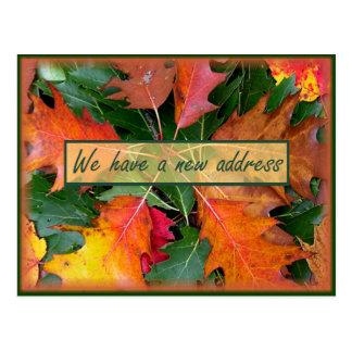 Mover-se das folhas do carvalho do Outono Cartão Postal