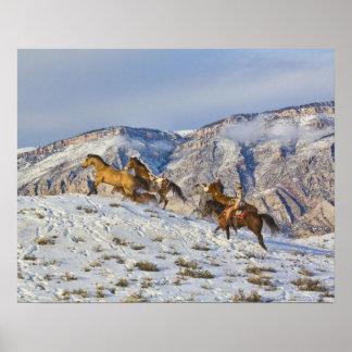 Movimentação do cavalo através da neve 3 pôsteres