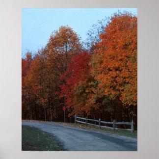 Movimentação do outono--Impressão 2