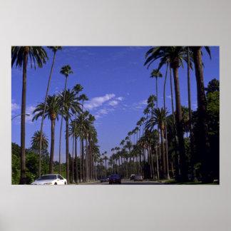 Movimentação residencial do rodeio, Beverly Hills, Poster