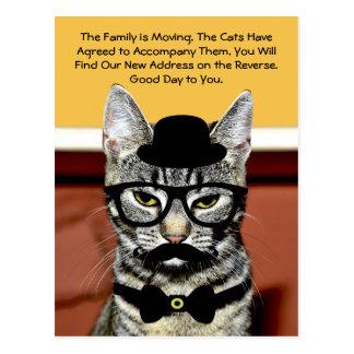 Movimento do Sr. Gato Anunciação Próximo Família Cartão Postal