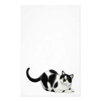 Moxie os artigos de papelaria do gato