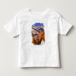 Mt. Whitney e pico solitário do pinho Camiseta