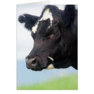 Mudança da vaca do cartão de endereço