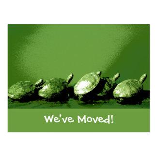 Mudança das tartarugas de endereço cartão postal
