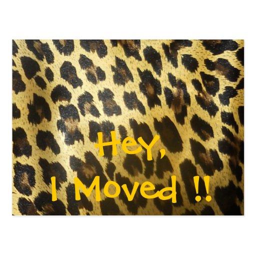Mudança do impressão do leopardo de endereço cartao postal