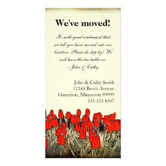 Mudança vermelha da ilustração da tulipa de cartõe cartão com foto