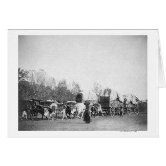 Mulher e menino com o Bullwhackers no trem do boi Cartao