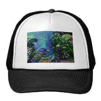 Mundo de fantasia subaquático dos peixes boné