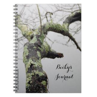 Musgo verde cadernos espiral