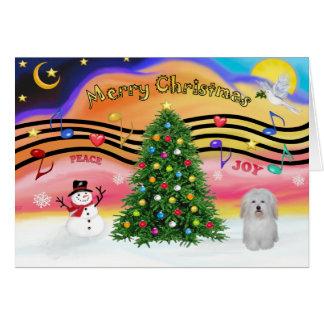 Música 2 do Natal - algodão De Tulear Cartão Comemorativo