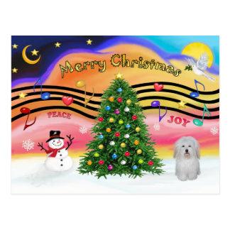 Música 2 do Natal - algodão De Tulear Cartão Postal