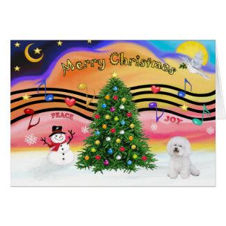 Música 2 do Natal - Bichon 1 Cartão Comemorativo
