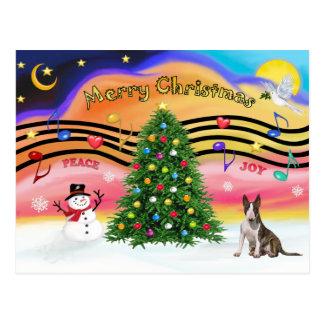 Música 2 do Natal - bull terrier (rajado) Cartao Postal