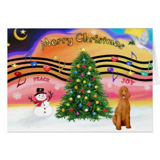 Música 2 do Natal - caniche (padrão do abricó) Cartões