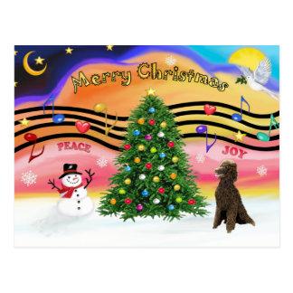 Música 2 do Natal - caniche (padrão do chocolate) Cartao Postal