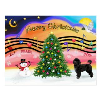 Música 2 do Natal - cão de água português 2 Cartao Postal