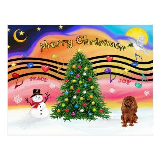 Música 2 do Natal - Cavalier (rubi) Cartoes Postais