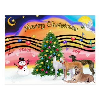Música 2 do Natal - galgos (quatro) Cartões Postais