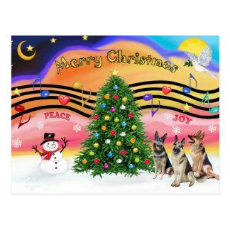 Música 2 do Natal - german shepherd (três) Cartões Postais