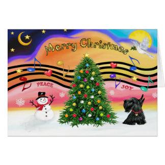 Música 2 do Natal - Scottish Terrier 12 Cartões