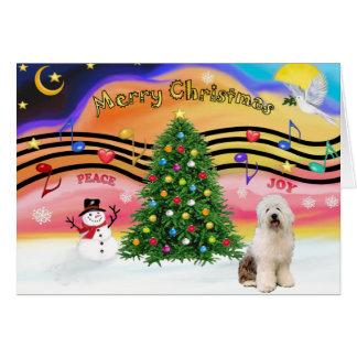 Música 2 do Natal - Sheepdog inglês velho 3 Cartoes