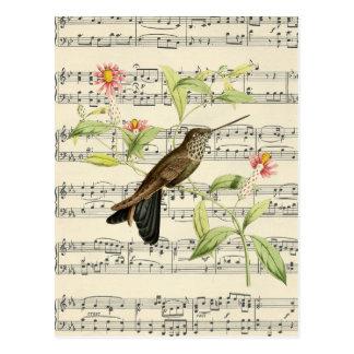 música botânica do colibri do cartão do vintage