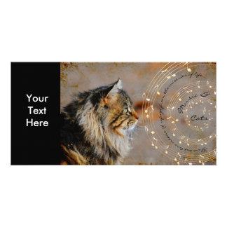 Música & cartão com fotos dos gatos