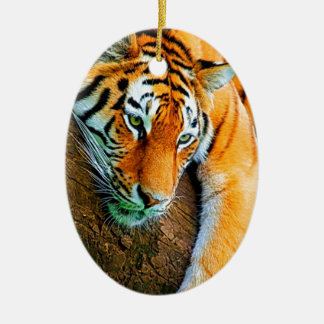 My-Galaxy-Note2-Wallpaper-HD-Animals%20 (128) .jpg Ornamento De Cerâmica Oval