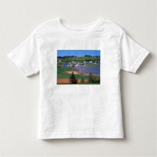 N.A. Canadá, Prince Edward Island. Os barcos são T-shirts