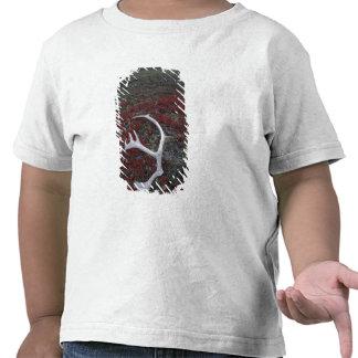 N.A., EUA, Alaska, antler do caribu de A.N.W.R. Tshirts