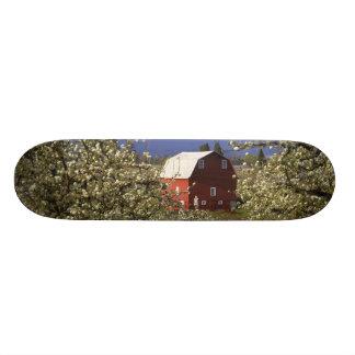 N.A., EUA, Oregon, Hood River County. Vermelho Shape De Skate 18,1cm