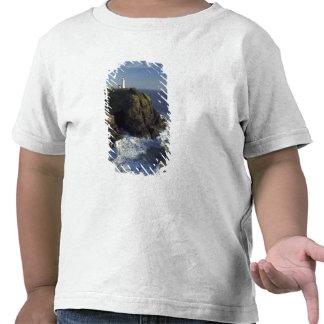 N.A., EUA, Washington, estado da decepção do cabo T-shirts