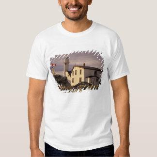 NA, Canadá, Terra Nova, angra da lagosta. Lagosta T-shirts