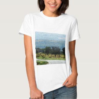 Na estrada a Curitiba Camisetas