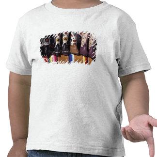 NA, EUA, New mexico, Santa Fé. Botas de vaqueiro T-shirts
