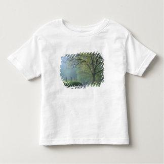 NA, EUA, Tennessee, angra de Cades, grande Camiseta