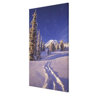 NA, EUA, Washington, o Monte Rainier NP, sapato de Impressão De Canvas Envolvida