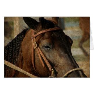 Na mostra do cavalo cartão comemorativo