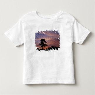 Nacional dos EUA, Kentucky, Cumberland Gap T-shirt