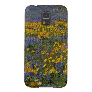 Nacional dos EUA, Washington, desfiladeiro do Rio Capinha Galaxy S5