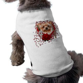 Namorados - chave a meu coração - yorkshire terrie camiseta para cães