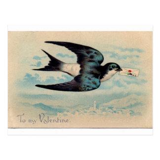 Namorados da andorinha cartão postal