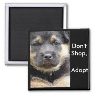 Não comprar adotam! ímãs do shep ímã quadrado