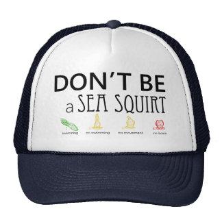 Não seja um mar esguincham com imagens da cor - boné